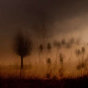 Ask yourself whether you want to capture reality or if you wish to make the picture look like a dream. Photograph/Chris Friel