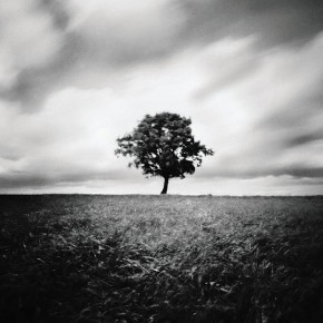 The most common subjects can look fascinating when shot through a pinhole camera. Photograph/Kirsten Thormann