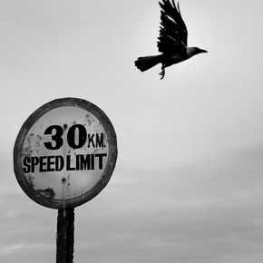 For Prashant, even a splitsecond is sufficient to make a brilliant photograph. Photograph/Prashant Godbole