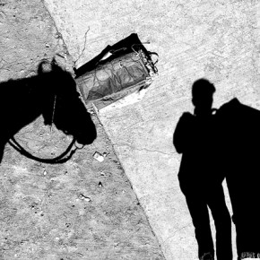 This image is simple, yet exciting. The play of shadows teases and creates curiosity. Photograph/Prashant Godbole
