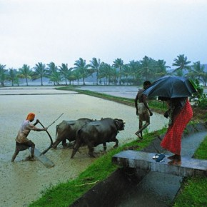 His colourful images of the monsoons captured almost every face of the season in Kerala. Photograph/Victor George