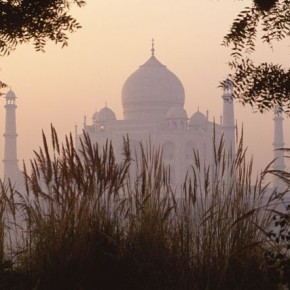 Taj Mahal, at sunrise: Even for such a familiar subject, a little thought can give unique results—in this case, shooting through reeds at sunrise!. Photograph/Steve Davey.
