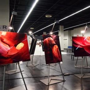 A fine art exhibition at the fair-3.