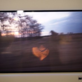 Photo installations at Fujifilm stall-6