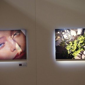 Photo installations at the Fujifilm Stall-2