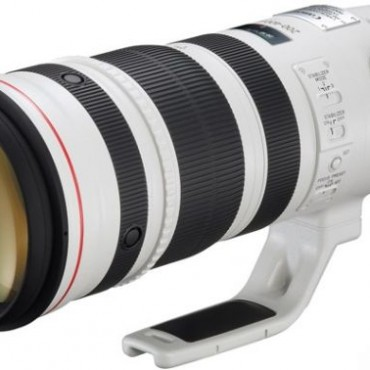 Canon 200–400m f/4L IS lens