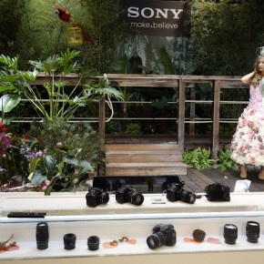 A model poses at the Sony stall.