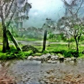 Photograph/Upasana Jain