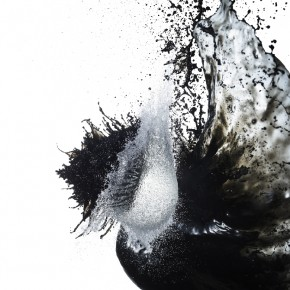 The collison of water and ink ignites a spark, which often leads to the creation of a beautiful chaos. Photograph/Shinichi Maruyama