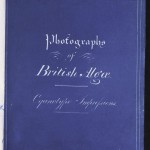 Photographs of British Algae: Cyanotype Impressions (1843) Anna Atkins published the first book that used cyanotypes as illustrations.