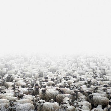 Rapidly disappearing villages and traditions are recurring themes in Tamas' work. Photograph/Tamas Dezso