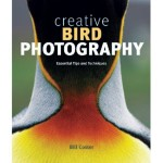 Creative Bird Photography by Bill Coster: Learn the secrets of creating memorable images of birds and their complex, fascinating lives.