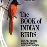 The Book of Indian Birds by Salim: This book has been a close companion to both amateur and expert birders for the last 50 years.