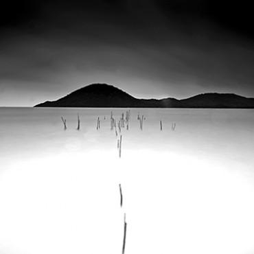 Photograph/Jayanta Roy