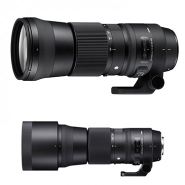 Sigma 150–600mm F5-6.3 DG OS HSM Sports CANON and Sigma 150-600mm F5–6.3 DG OS HSM Contemporary CANON