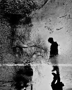 Photograph/Matthew Wylie