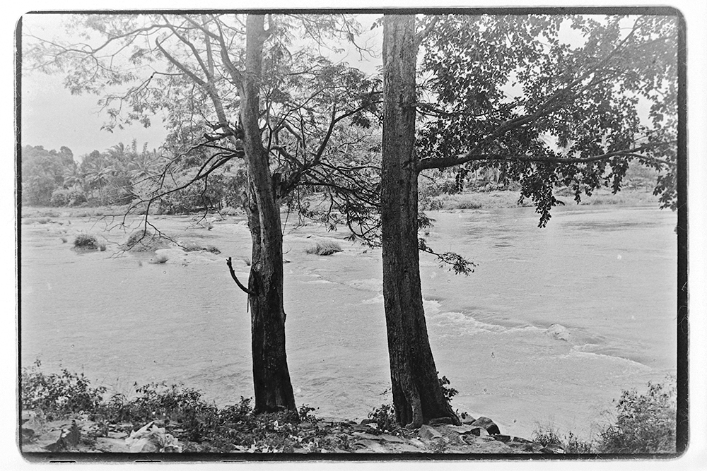 River Cauvery, 2016. Photograph/Sathish Kumar