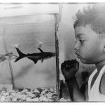 My nephew with his fish, 2015. Photograph/Sathish Kumar
