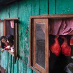 Photograph/Adusyanti Chatterjee