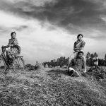Photograph/Mithun Saha