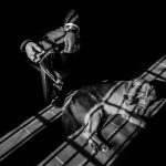 Photograph/Vivek Gowda