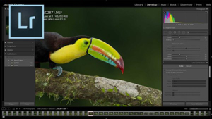 Adobe Lightroom Classic – Complete Online Course